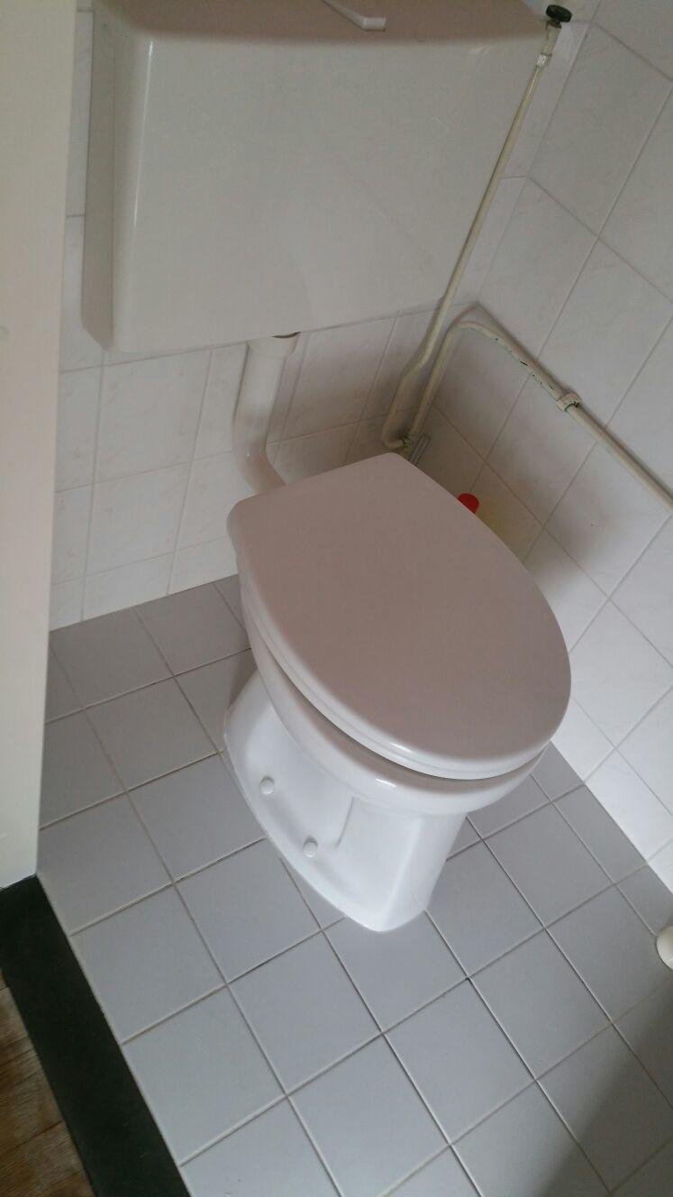 verstopping toilet in Leiderdorp, gedaan door Michel Duin ...